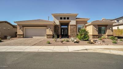 Cave Creek Single Family Home For Sale: 5438 E Las Piedras Way