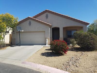 Mesa Single Family Home For Sale: 3511 N Sunaire Street