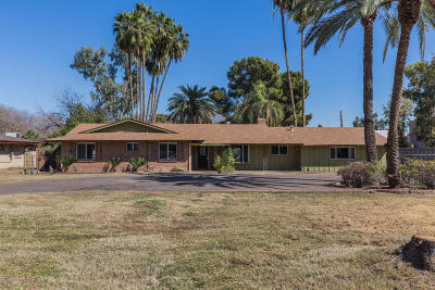 Phoenix Single Family Home For Sale: 7209 N 15th Avenue
