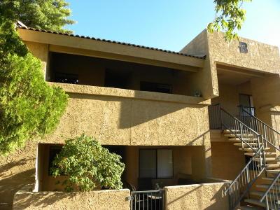 Phoenix Rental For Rent: 10828 N Biltmore Drive #204