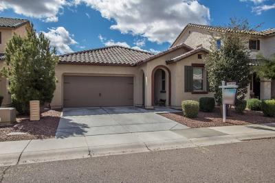 Phoenix Single Family Home For Sale: 5517 W Buckskin Trail