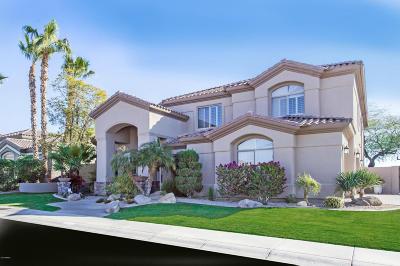 Single Family Home For Sale: 1564 W Saltsage Drive