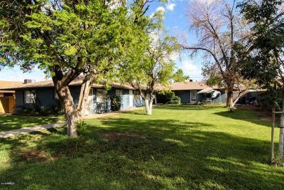 Apache Junction, Mesa Multi Family Home For Sale: 744 5th Avenue