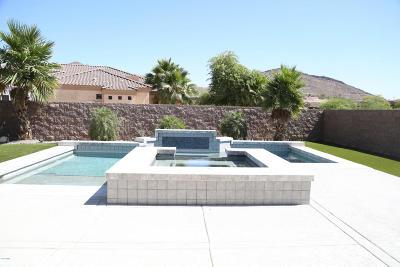 Phoenix Single Family Home For Sale: 3346 W Cloud Road