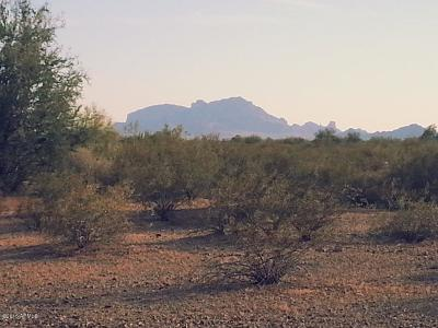 Tonopah Residential Lots & Land For Sale: 395xx W Mountain View Road