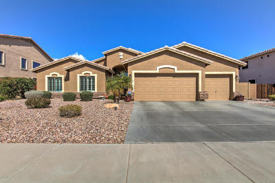 Maricopa Single Family Home For Sale: 42302 W Bravo Drive
