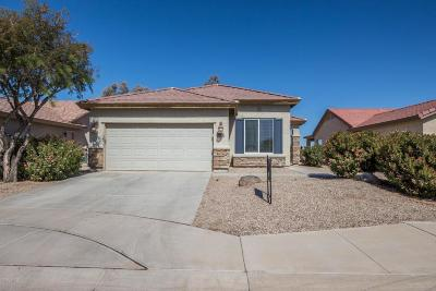 Casa Grande Single Family Home For Sale: 2588 E Desert Wind Drive