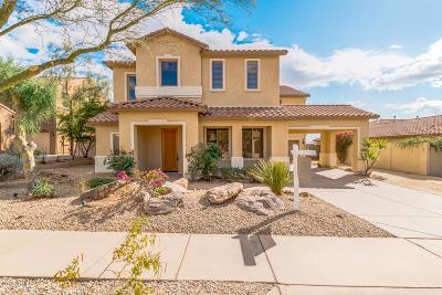 Phoenix Single Family Home For Sale: 2601 W Via Perugia