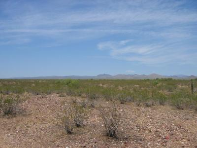 Wittmann Residential Lots & Land For Sale: 22000 W Restin Road