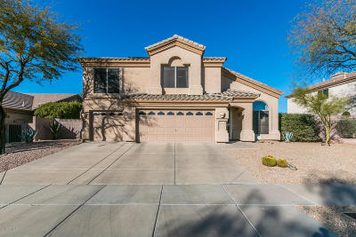 Cave Creek Single Family Home For Sale: 4832 E Quien Sabe Way