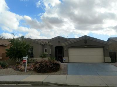 Goodyear Single Family Home For Sale: 17865 W Desert View Lane