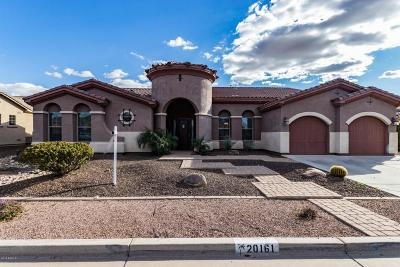 Queen Creek Single Family Home For Sale: 20161 E Silver Creek Lane