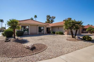 Mesa Single Family Home For Sale: 2277 Leisure World