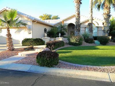 Goodyear Single Family Home For Sale: 15606 W Fairmount Avenue