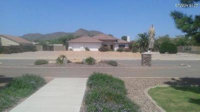 Peoria Single Family Home For Sale: 8408 W Avenida Del Sol