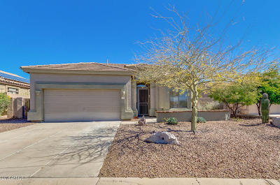 Mesa Single Family Home For Sale: 4143 N Starry Pass Circle