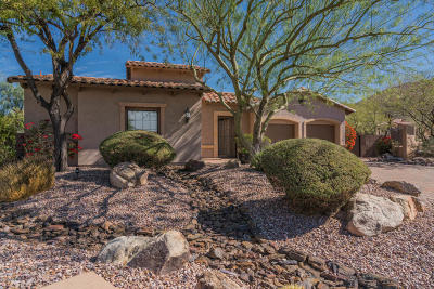 Mesa Single Family Home For Sale: 8226 E Teton Street