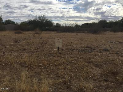 Peoria Residential Lots & Land For Sale: 8013 W Villa Chula Lane