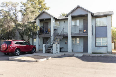Mesa Multi Family Home For Sale: 45 Phyllis #215