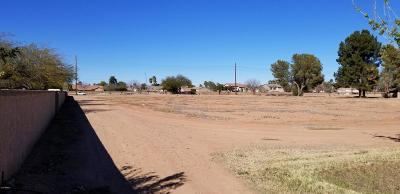 Gilbert Residential Lots & Land For Sale: 14549 E Ray Road