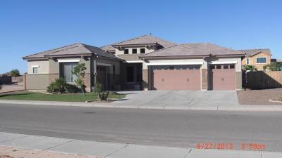 Casa Grande Single Family Home For Sale: 374 E Ocean View Drive