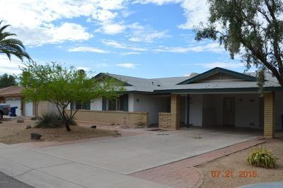 Tempe Single Family Home For Sale: 1201 E Loyola Drive