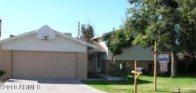 Tempe Single Family Home For Sale: 3326 S Newberry Road
