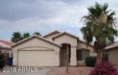 Single Family Home For Sale: 501 S Silverbrush Drive