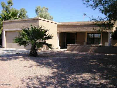 Tempe Single Family Home For Sale: 7333 S Palm Drive