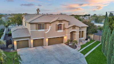 Litchfield Park Single Family Home For Sale: 13110 W Denton Street