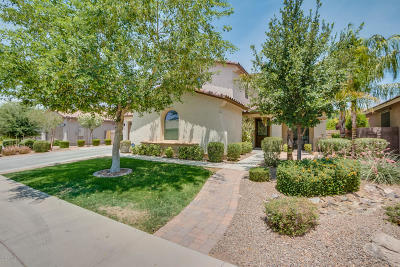 Gilbert Single Family Home For Sale: 2444 E Sourwood Drive