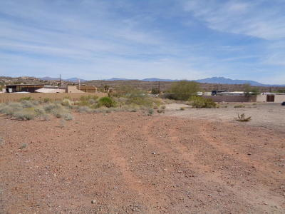 Fountain Hills Residential Lots & Land For Sale: 12002 N Falcon Drive