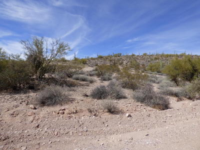 Gold Canyon Residential Lots & Land For Sale: Aprox 3100 S Yaqui