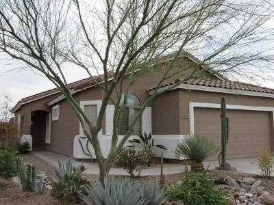 Casa Grande Single Family Home For Sale: 1773 E Desert Breeze Place