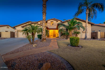 Chandler Single Family Home For Sale: 1329 S Iowa Court