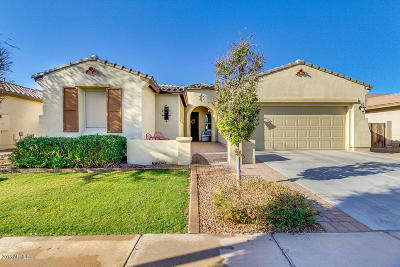 Gilbert Single Family Home For Sale: 4577 E Waterman Street