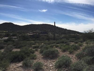 Quail Canyon, Quail Canyon At The Superstitions Residential Lots & Land For Sale: 9072 E Canyon Creek Drive