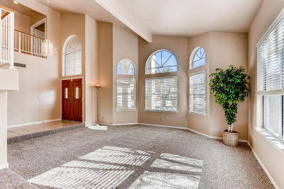 Goodyear Single Family Home For Sale: 10776 S Coolwater Drive