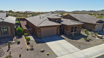 Goodyear Single Family Home For Sale: 18223 W Sequoia Drive