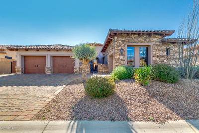 Mesa Single Family Home For Sale: 4041 N Silver Ridge Circle