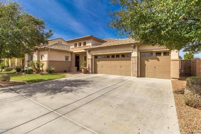 Casa Grande Single Family Home For Sale: 3011 N Spring Lane
