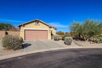 Gold Canyon Single Family Home For Sale: 10676 E Bluebird Mine Court