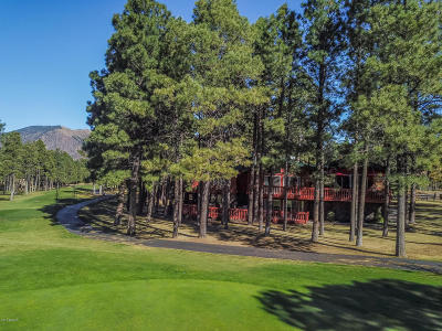 Flagstaff Single Family Home For Sale: 1407 N Mariposa Road