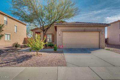 Phoenix Single Family Home For Sale: 9201 W Cambridge Avenue