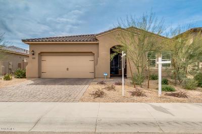 Litchfield Park Single Family Home For Sale: 14619 W Pasadena Avenue