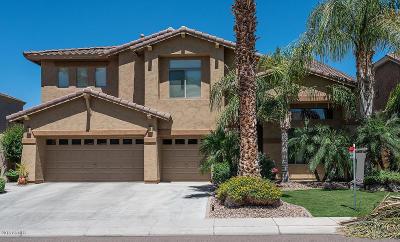 Phoenix AZ Single Family Home For Sale: $519,500