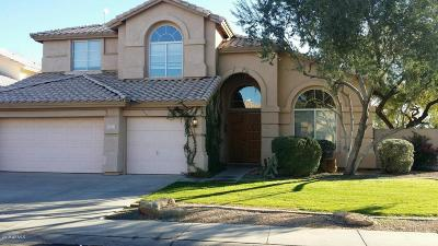 Chandler Single Family Home For Sale: 5111 W Laredo Street