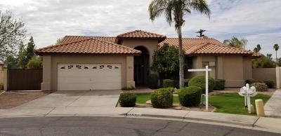 Mesa Single Family Home For Sale: 1202 E Greenway Circle