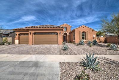 Mesa Single Family Home For Sale: 10636 E Lumiere Avenue