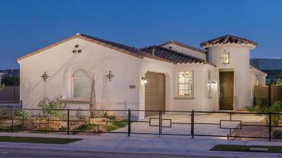 Phoenix Single Family Home For Sale: 2934 E Sunland Avenue